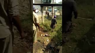 fight of two bulls and accident