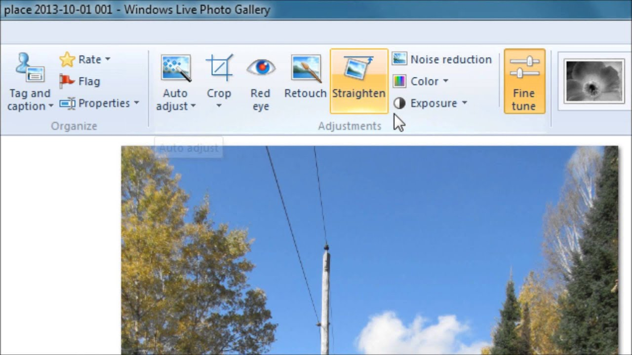 Windows Live Photo Gallery Windows 10 Download