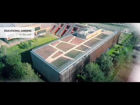 Akademeia High School | Construction chronicle 2016/2017