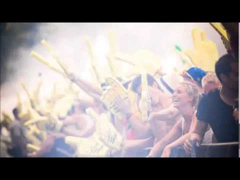 The BEST of Tomorrowland 2013 [MEGAMIX]- Download