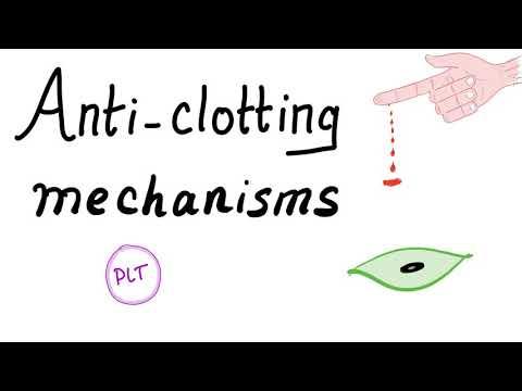 Anti-clotting Mechanisms