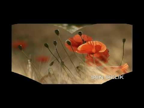 gelincik çiçeğim.mp4