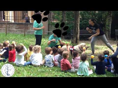 Vlog PetEducation
