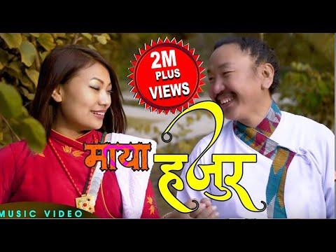 Maya Hajur Ft.Rajesh Payal Rai & Sunita Thegim || Sumaya Rai || D.R. Atu