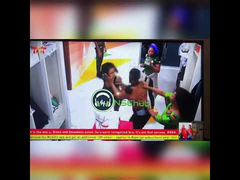 Download #BBNaija19 : Tacha and Mercy's fight finally gets physical