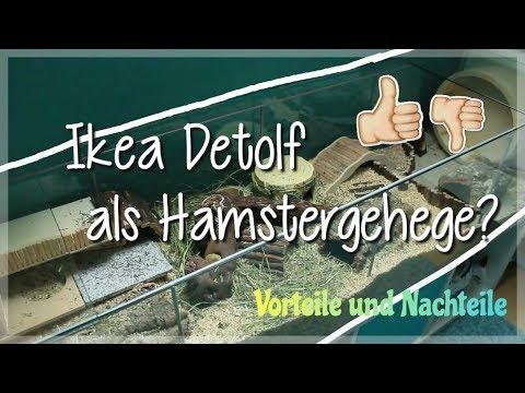 Ikea DETOLF Vitrine als Hamstergehege?! - Meine Erfahrungen