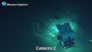 Camera 2: Gulf of Mexico Technology Demonstration
