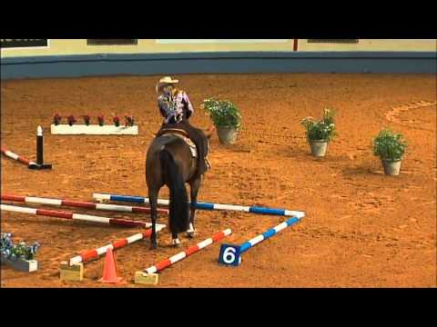 Our Blue Moon - Nancy Chapman - 2012 AQHA World Show - Amateur Trail