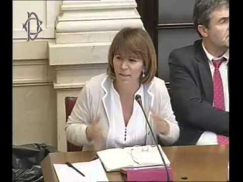 Roma - Lotta frodi, audizione agenzia dogane (05.11.13)