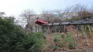 50M 고공 수목전지작업 (주)NS조경 1811-606…