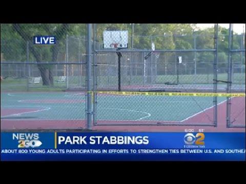 Rockville Centre Stabbings
