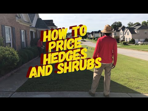 How To Price Hedges And Shrubs (The Quick Cutz Way)
