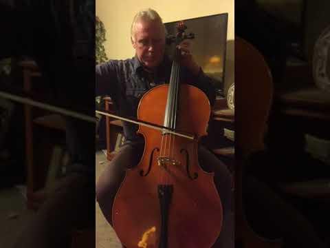 Beginner cello