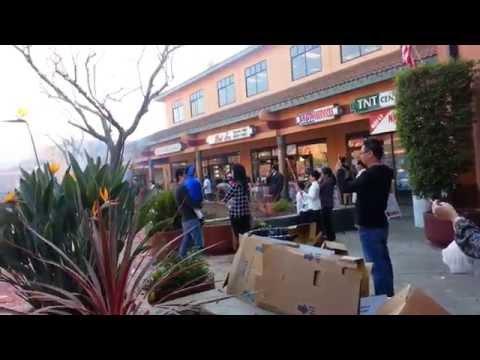 PHÓNG SỰ TẾT 2015  KHU LION IN SAN JOSE CALIFORNIA USA.