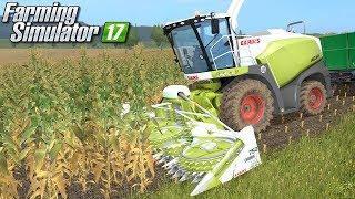 Claas Jaguar kosi kukurydzę - Farming Simulator 17 | #46