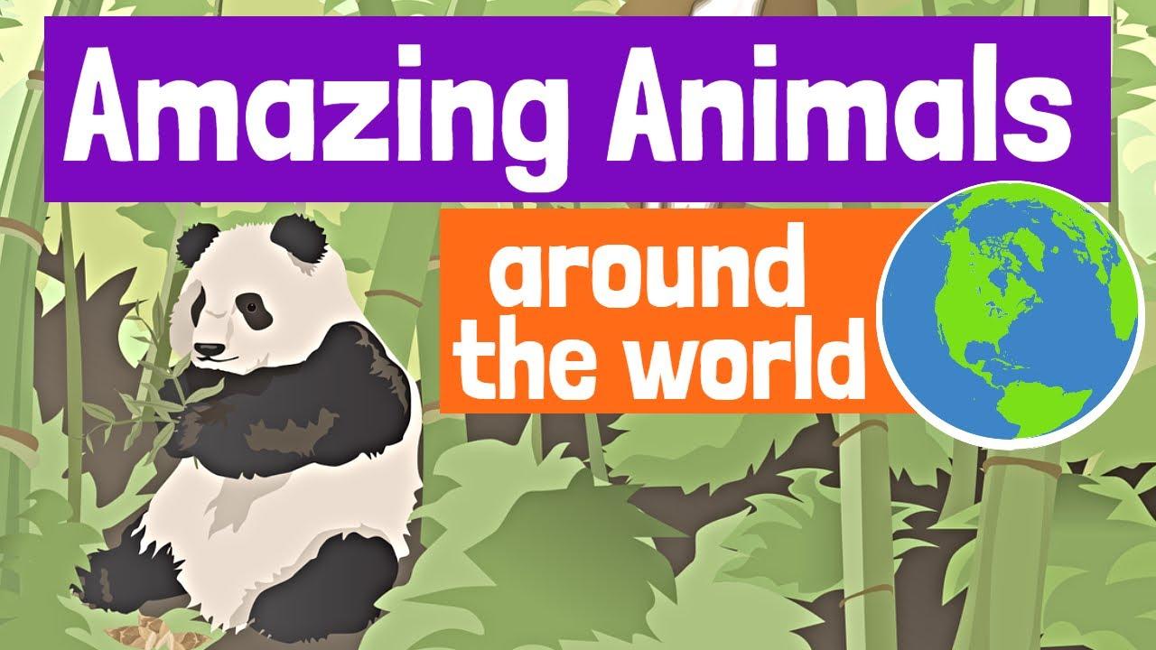 Amazing Animals Around the World for Kids