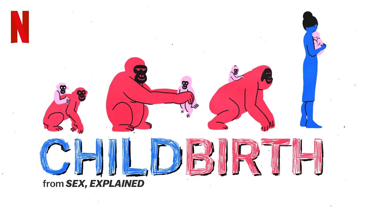 il sesso spiegato