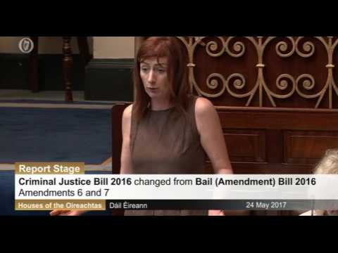 Criminal Justice Bill amendments