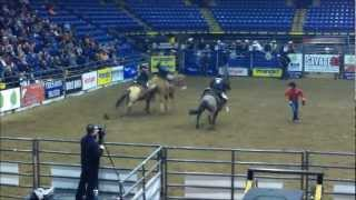 Rodeo Americano en Reading, Pennsylvania. Feb. 2, 2013