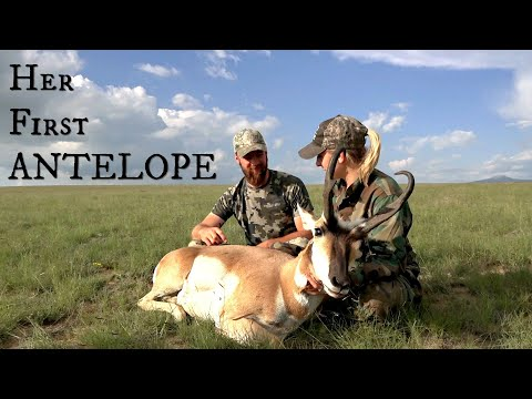 Antelope Hunt In New Mexico