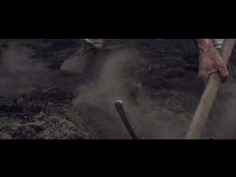 Carry Me Home (Official Music Video) - The Sweeplings