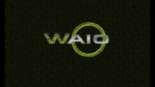 Waio - Wicked