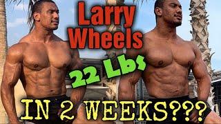 Larry Wheels - Did he REALLY Gain 22 lbs of Muscle in 2 weeks?