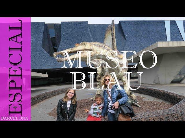 Museu blau. Museu de ciencies naturals | Barcelona #4