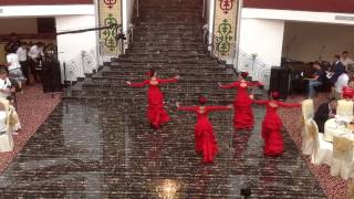 Ханыша испанскии танец дидюля фламенко