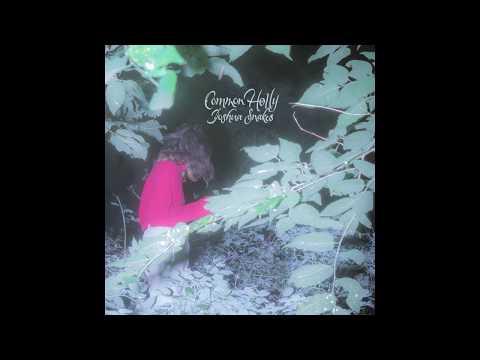 Common Holly - Joshua Snakes