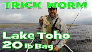 Lake Toho - How to fish a Texas Rigged Trick Worm