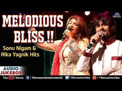 Sonu Nigam & Alka Yagnik  Melodious Bliss  90s Bollywood Romantic Songs  Best Hindi Songs