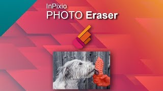 Remove easily your items from your photo - InPixio Photo Eraser