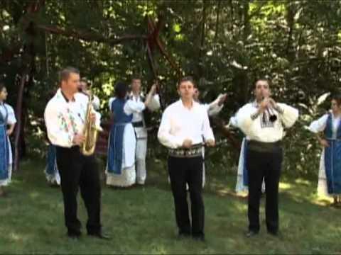 Puiu Codreanu - Petre, Petre