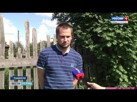 Житель Кудымкара превращает город в Дубраву