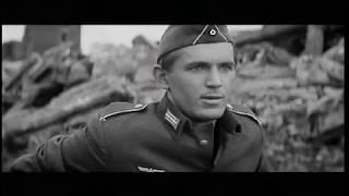 Владимир Басов. Бегун на длинные дистанции - док. проект