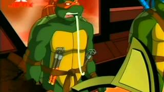 TMNT PL Wojownicze Zółwie Ninja 2003 -