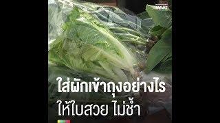 เทคนิคใส่ผักเข้าถุงอย่างไร-ให้ใบสวย-ไม่ช้ำ