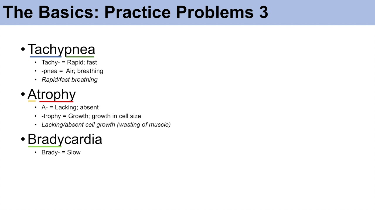Medical Terminology - The Basics - Lesson 1 | Practice and Example Problems