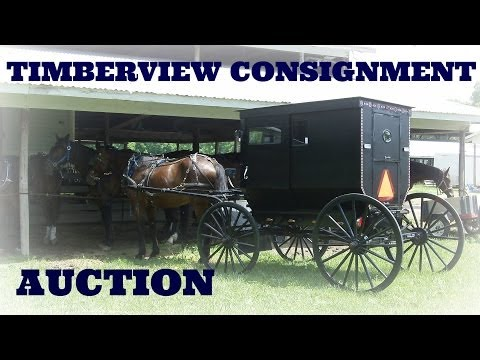 Timberview Consignment Auction