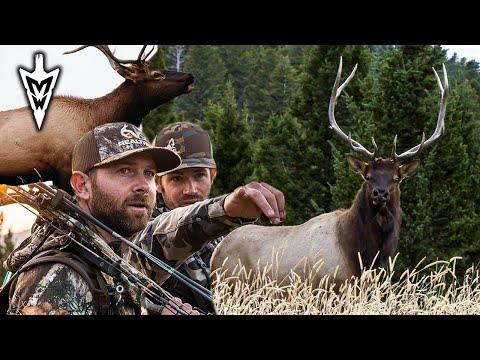 Montana Archery Elk Hunt, Three Year Journey | Pt 1 | Midwest Whitetail