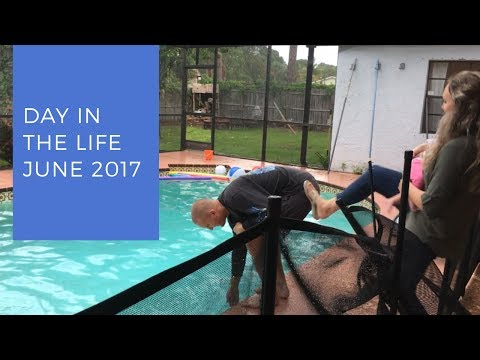 Day in the Life: June 2017