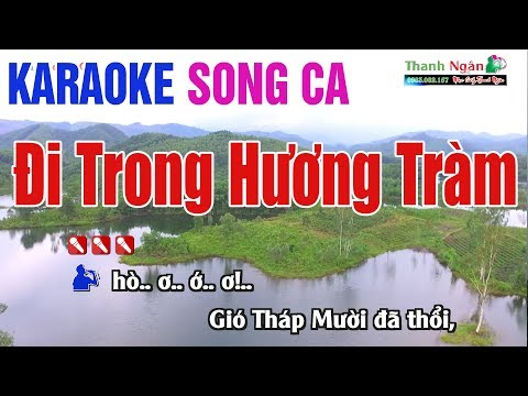 Đi Trong Hương Tràm Karaoke -Quang Minh -