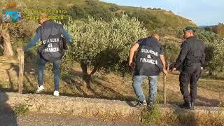 Calabria news - Locri, GdF scopre falsi braccianti: truffa all'Inps