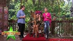 Dschungelcamp 2019   Evelyn Burdecki ist Dschungelkönigin 2019!