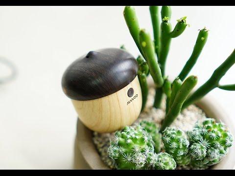 Mini Acorn Bluetooth Speaker Review