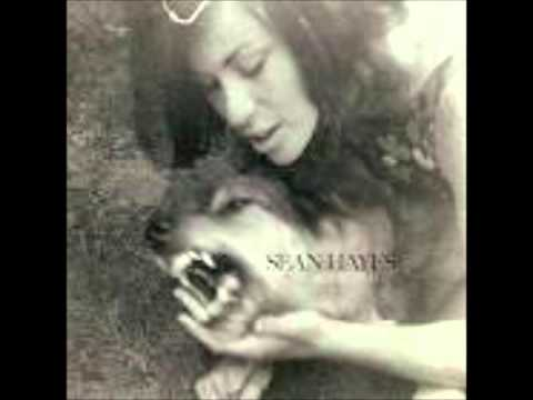 Sean Hayes - Soul Shaker
