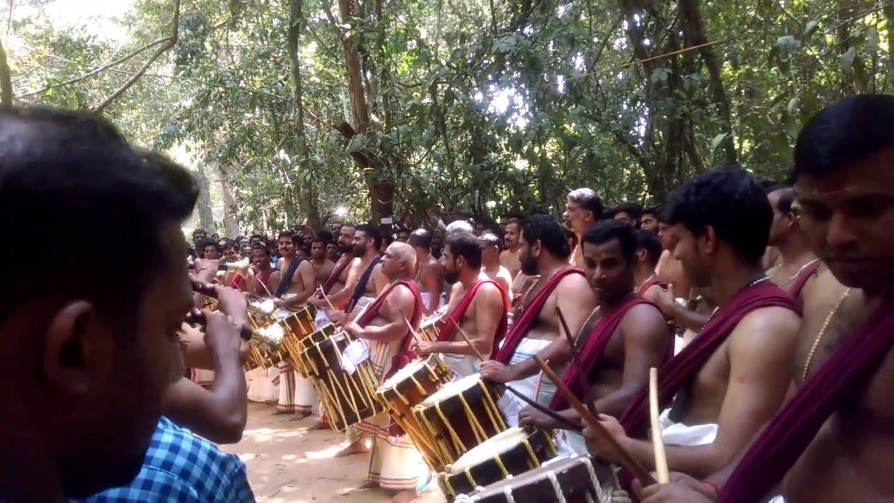 Download Vanamadhyathil Pandimelam - 2016