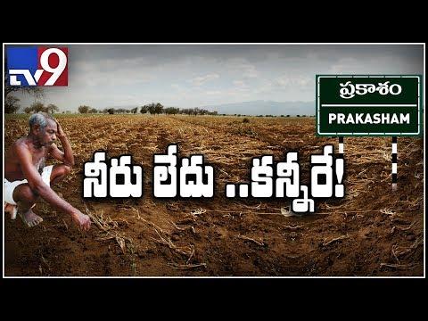 Worst-ever Drought Hits Prakasam - TV9