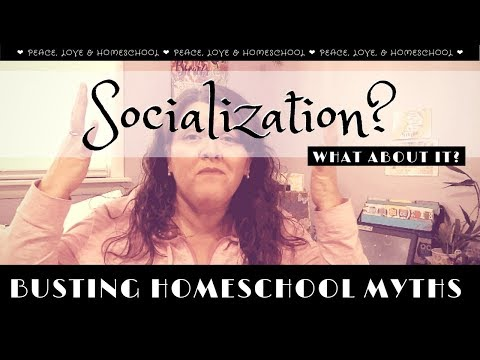 Busting The Homeschool Myths And Other Thoughts || Collab || VEDA
